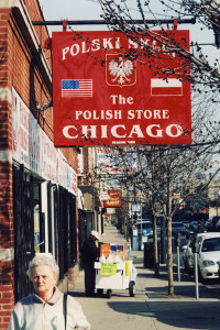 polish community in chicago, polish speaking chicago realtor